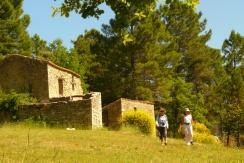 2016-07-03-10h34m29_gaulois et romains