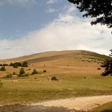 Col d'Arron