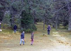 Promenons nous dans les bois, voir si les champignons sont là