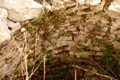2017-03-26-13h11m09_Rocher-des-Aures